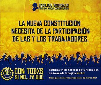 ANEF se sumó a la construcción de la Nueva Carta Magna de Chile