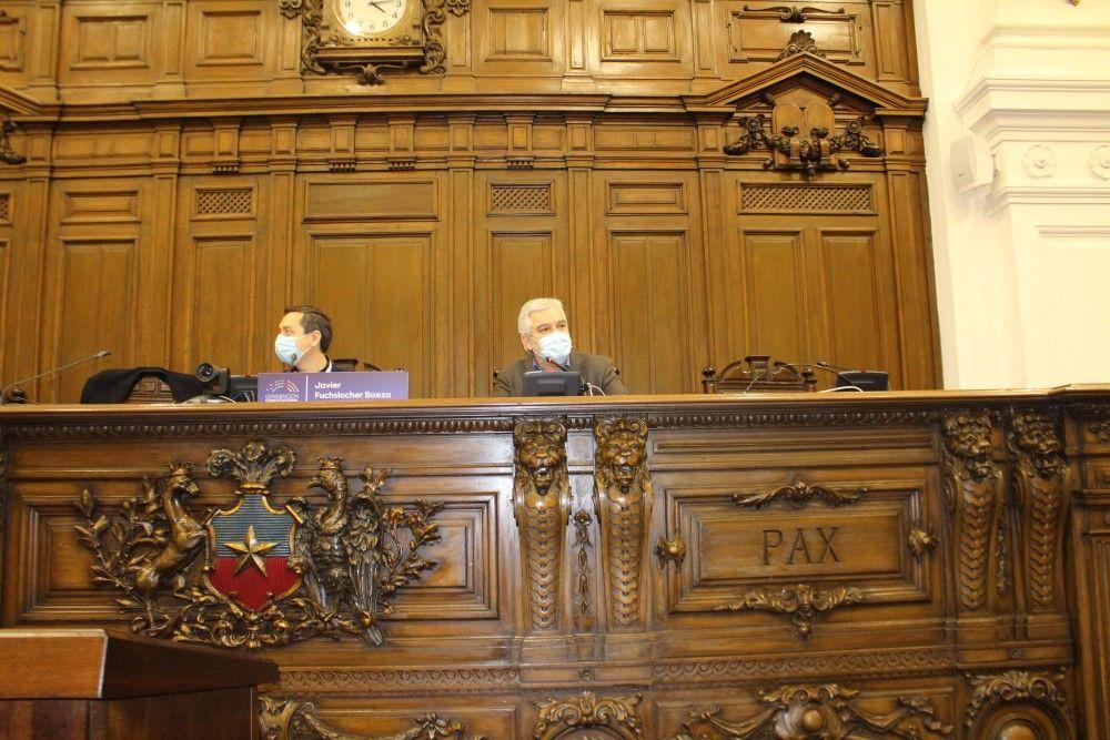 """ANEF expuso ante Convención Constitucional su propuesta de """"Participación Popular desde la Autonomía Sindical"""""""